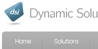 Dynamic Solutions International